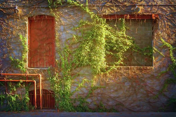 Wall Art - Photograph - Pipes, Windows, And Ivy by Nikolyn McDonald
