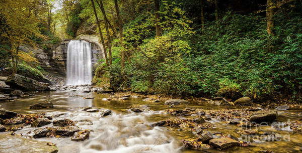 Wall Art - Photograph - Looking Glass Falls 3 by DiFigiano Photography