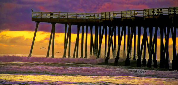 Wall Art - Photograph - Pismo Beach Pier Seagull II by Floyd Snyder