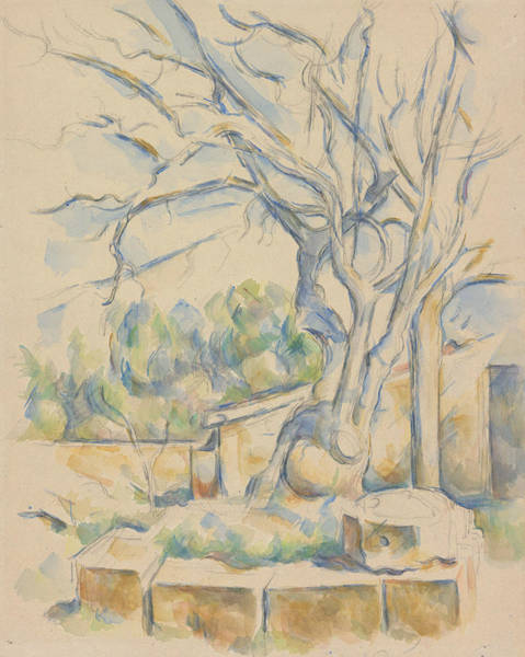 Wall Art - Drawing - Pistachio Tree At Chateau Noir by Paul Cezanne