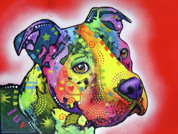 Wall Art - Painting - Pit-bull Too by Dean Russo Art