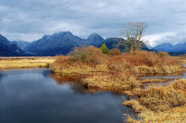 Photograph - Pitt Polder Snowcapped Mountains by Sharon Talson
