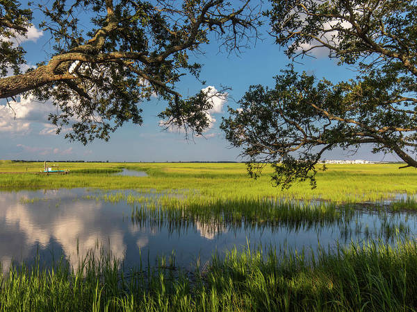 Photograph - Pitt Street Bridge Blue And Green by Donnie Whitaker