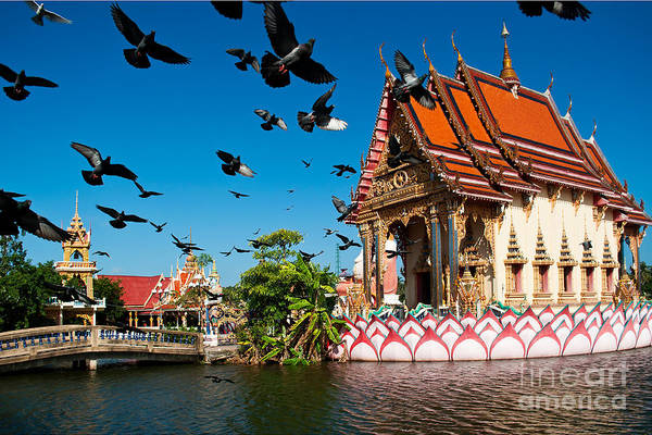 Historic Monument Wall Art - Photograph - Plai Laem Temple In  Koh Samui, Thailand by Guzel Sakhabieva