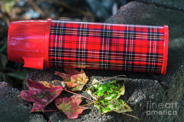 Photograph - Plaid Thermos - Aladdins Heritage by Dale Powell