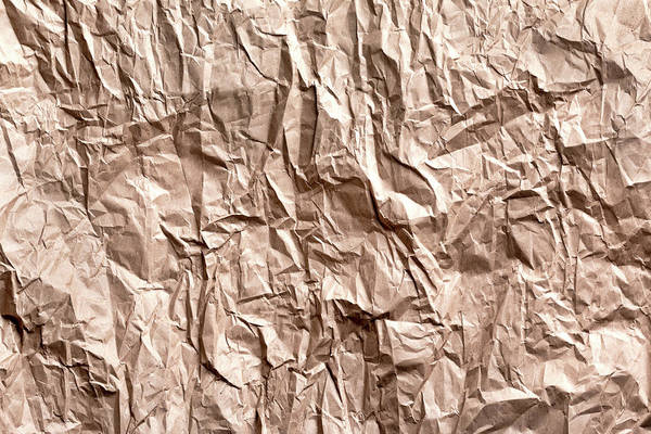Blank Wall Art - Photograph - Plain Brown Wrapper by Tom Mc Nemar