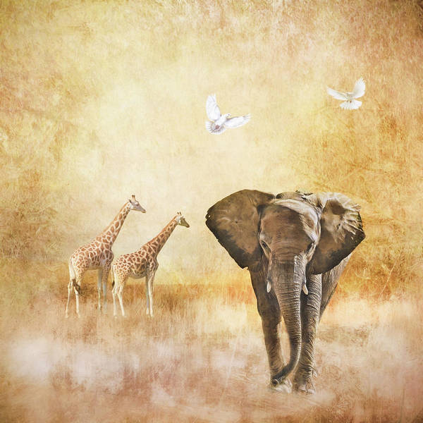 Digital Art - Plains Of Africa by Marilyn Wilson