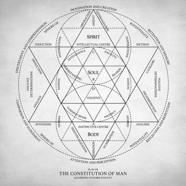 Digital Art - Plan Of Constitution Of Man by Zapista Zapista