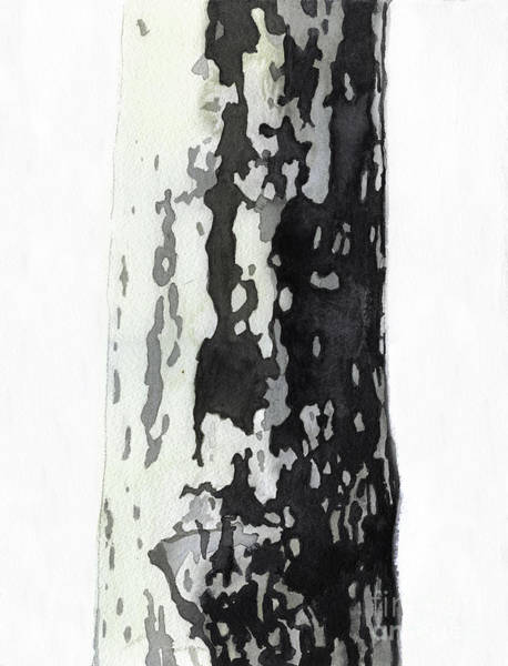 Wall Art - Painting - Plane Tree by Graham Dean