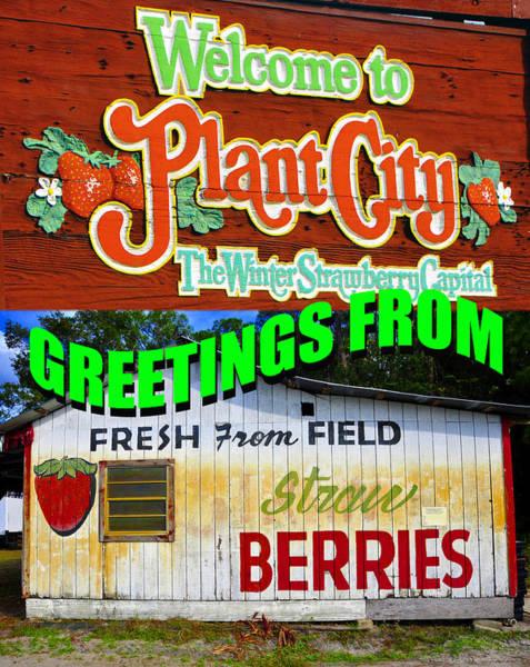 Wall Art - Photograph - Plant City Custom Postcard by David Lee Thompson