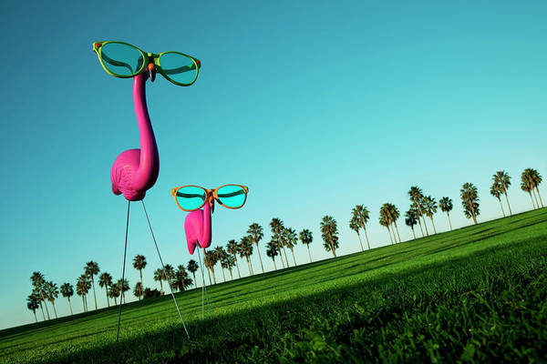 Two Birds Photograph - Plastic Pink Flamingos On A Green Lawn by Skodonnell