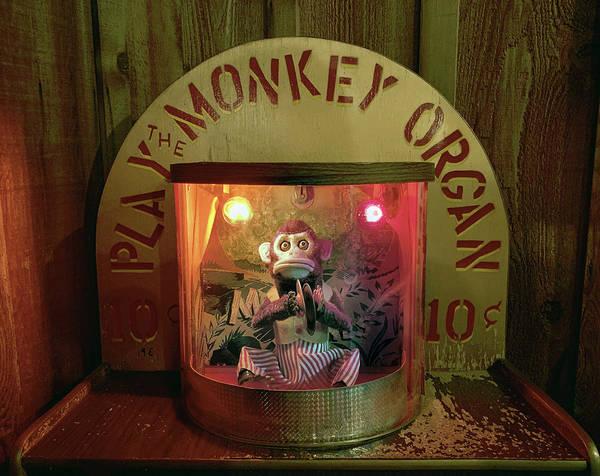Photograph - Play The Monkey Organ by Marilyn Hunt