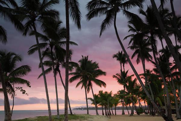 Greater Antilles Photograph - Playa Las Terrenas Beach At Dawn, Las by Walter Bibikow