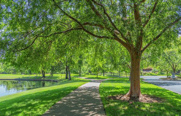 Photograph - Pleasant Park by Jonathan Hansen