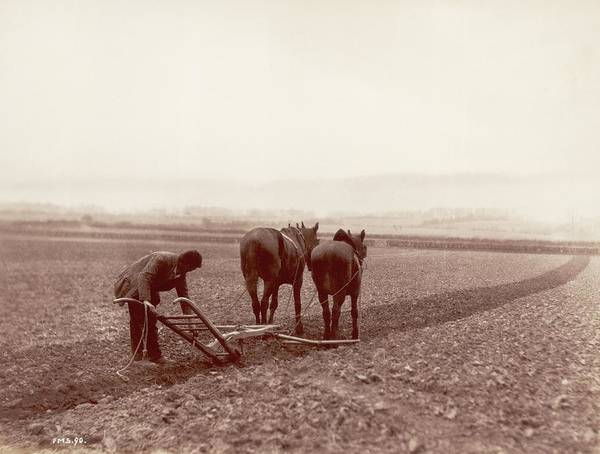Pulling Photograph - Ploughing by Frank Meadow Sutcliffe