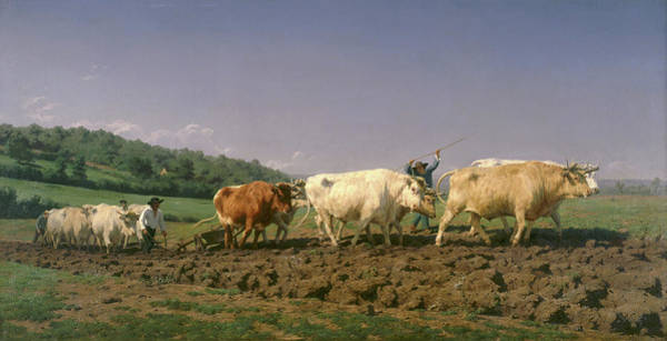 Ploughing Painting - Ploughing In Nevers, 1849 by Rosa Bonheur