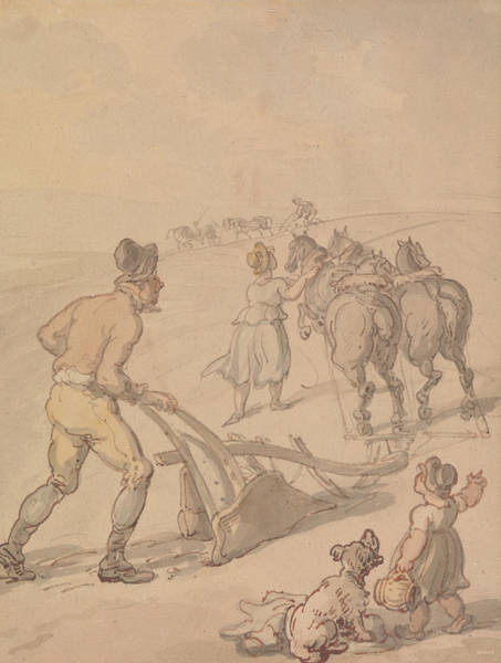 Drawing - Ploughing by Thomas Rowlandson