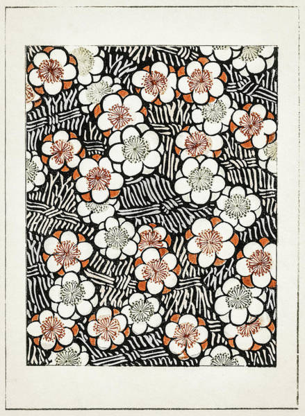 Wall Art - Painting - Plum Blossom - Japanese Traditional Pattern Design by Watanabe Seitei