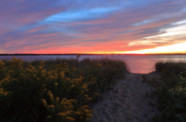 Wall Art - Photograph - Plum Island Beach Sunset And Goldenrod by John Burk
