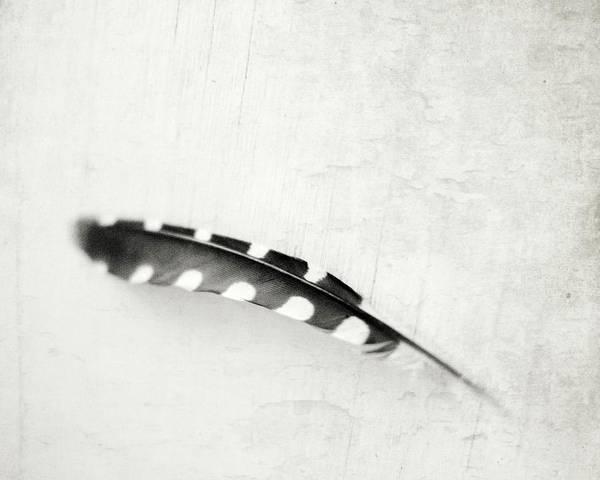 Wall Art - Photograph - Plume by Lupen Grainne