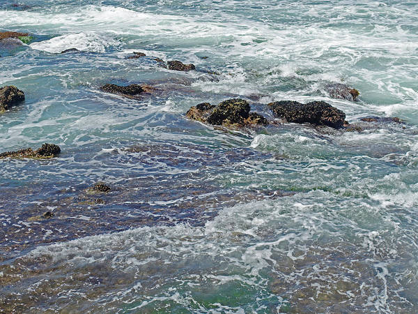 Photograph - Poem Of The Sea by Lynda Lehmann