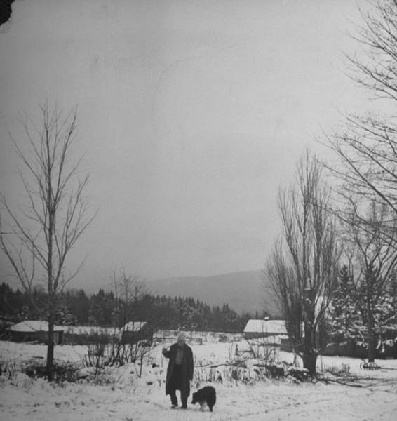 Poet Photograph - Poet Robert Frost by Eric Schaal