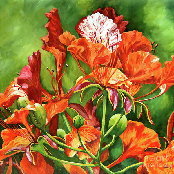 Wall Art - Painting - Poinciana Detail Square by John Clark