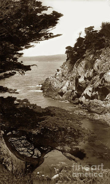 Photograph - Point Lobos And Carmel Bay Circa 1895 by California Views Archives Mr Pat Hathaway Archives