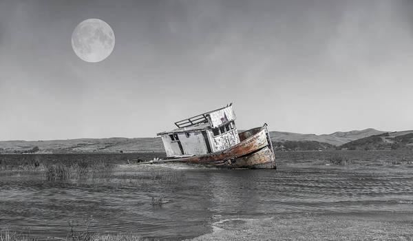 Wall Art - Photograph - Point Reyes California Shipwreck by Betsy Knapp