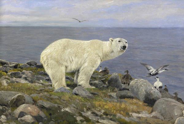 Wall Art - Painting - Polar Bear And Eider Ducks On The Coast by Richard Friese