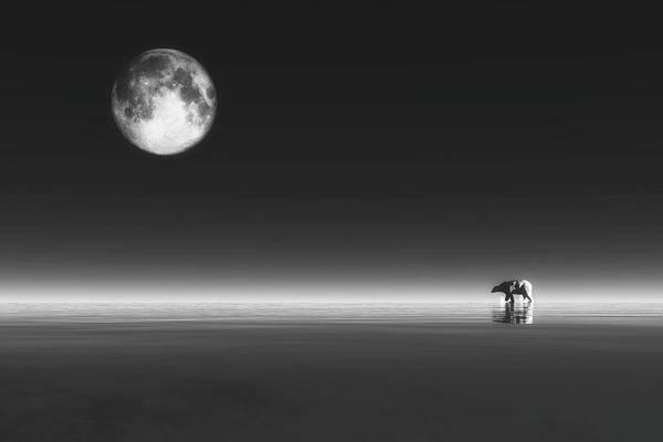 Digital Art - Polar Bear by Jan Keteleer