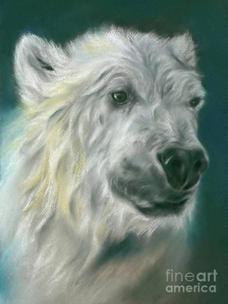 Pastel - Polar Bear Portrait by MM Anderson