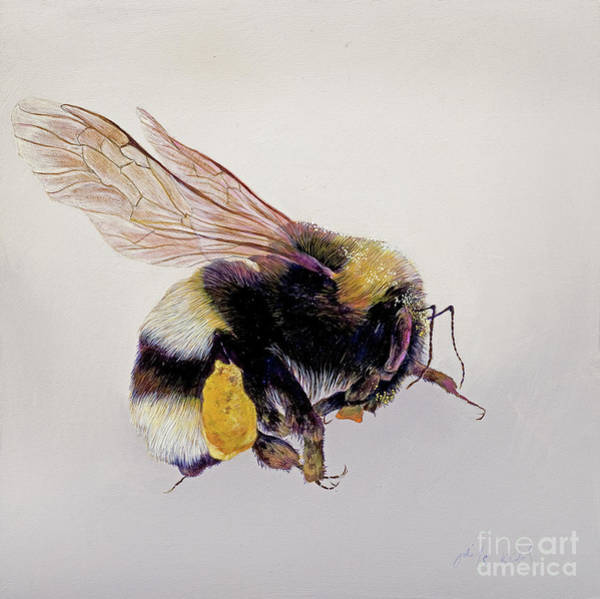 Pollinator Wall Art - Painting - Pollen Sac One by Odile Kidd