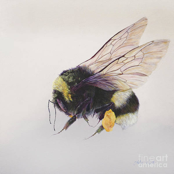 Wall Art - Painting - Pollen Sac Two by Odile Kidd