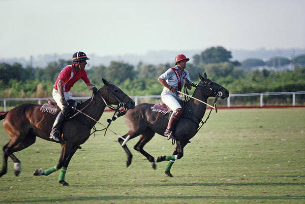 Horizontal Photograph - Polo In Italy by Slim Aarons