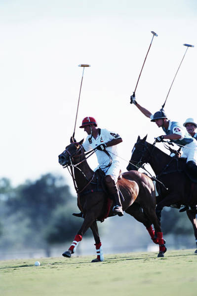 Coordination Wall Art - Photograph - Polo Players Swinging At Ball by Nicolas Russell