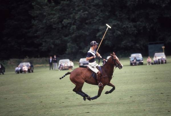Horse Photograph - Polo Prince by Slim Aarons