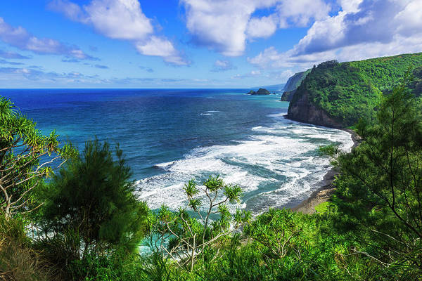 Wall Art - Photograph - Pololu Valley And Beach, North Kohala by Russ Bishop