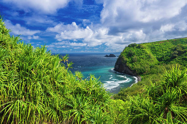 Untamed Photograph - Pololu Valley And Beach Through Hala by Russ Bishop