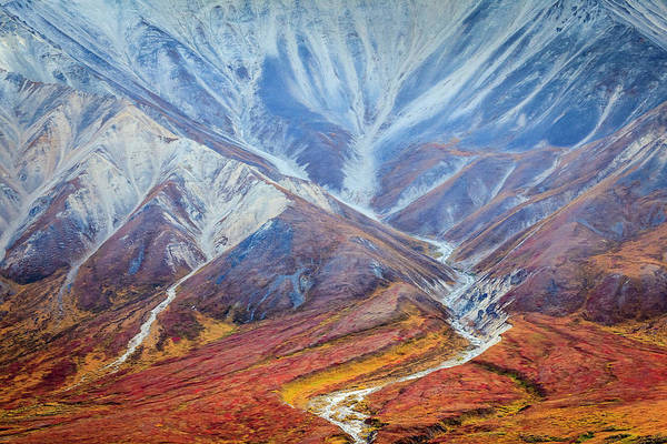 Wall Art - Photograph - Polychrome Pass Along The Kantishna by Steve Zmak