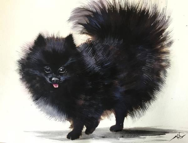 Painting - Pomeranian Dog 6 by Katerina Kovatcheva
