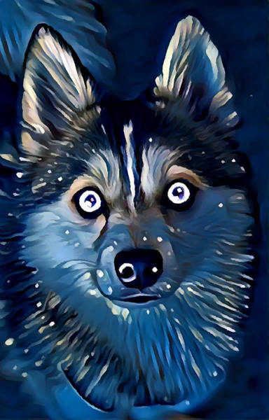 Wall Art - Painting - Pomsky by Chris Butler
