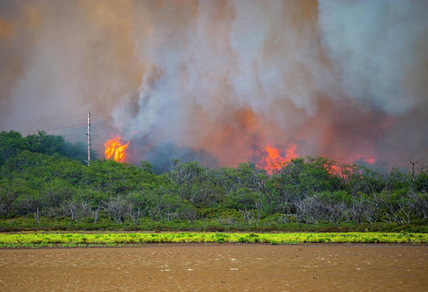 Photograph - Pond Fire by Anthony Jones