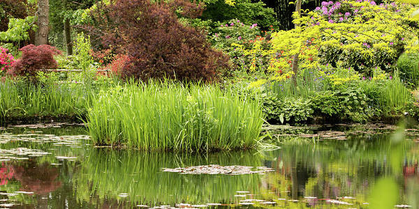 Photograph - Pond Reflections In Monet's Garden by E Faithe Lester