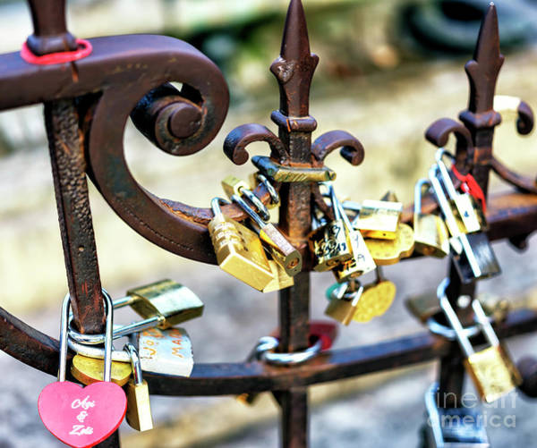 Photograph - Ponte Vecchio Love Locks In Florence by John Rizzuto
