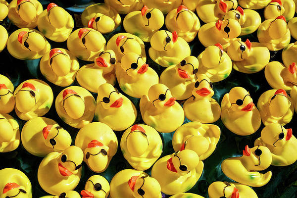 Photograph - Pool Of Duckies by Todd Klassy