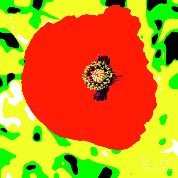 Wild Poppies Digital Art - Pop Art Poppy by Marianne Campolongo