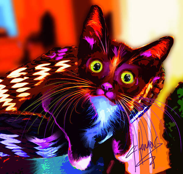 Painting - pOpCat Maverick The Kitten by DC Langer
