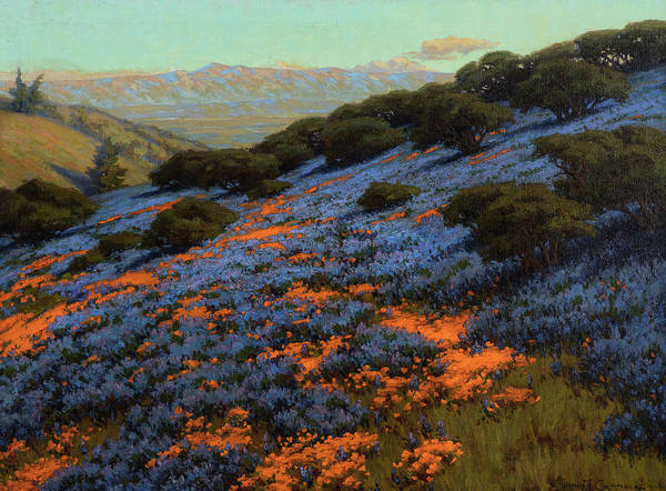 Wall Art - Painting - Poppies And Lupine, 1912 by John Marshall Gamble