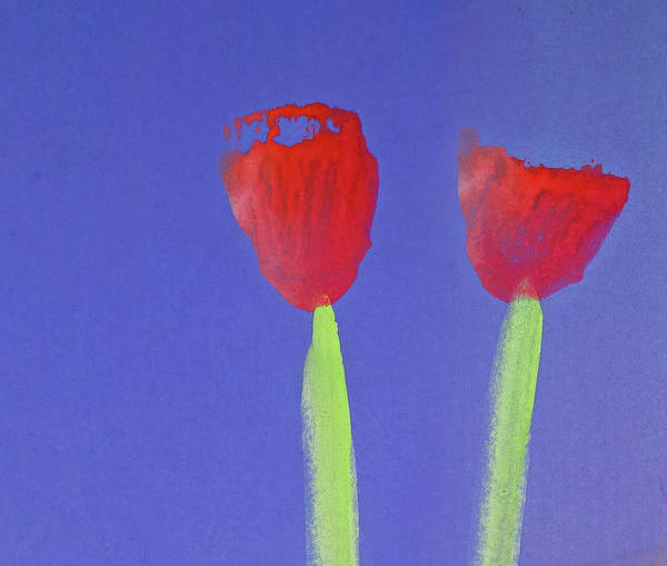 Wall Art - Painting - Poppies by Charles Stuart